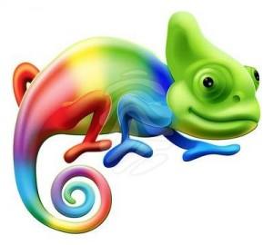 colorful-chameleon