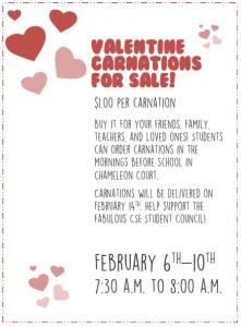 ValentineCarnations